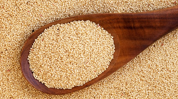 Как сделать масло из семян амаранта