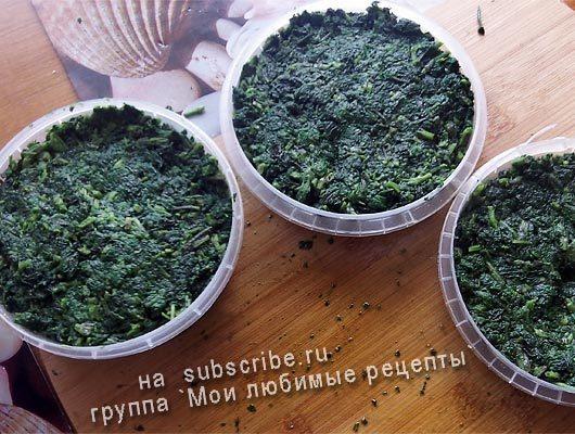 Сбор крапивы, заготовка крапивы на зиму для супа из крапивы