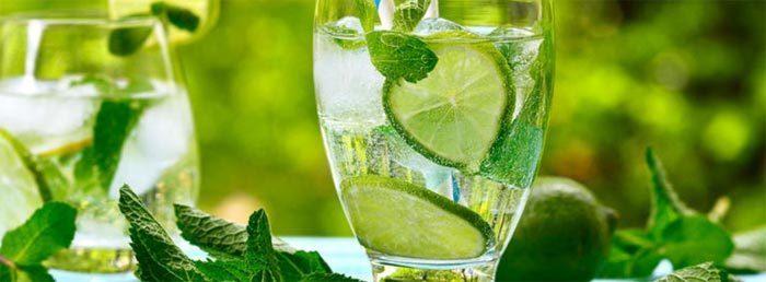 Рецепты напитков с мятой