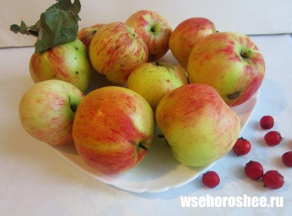 Цукаты из яблок рецепт с фото